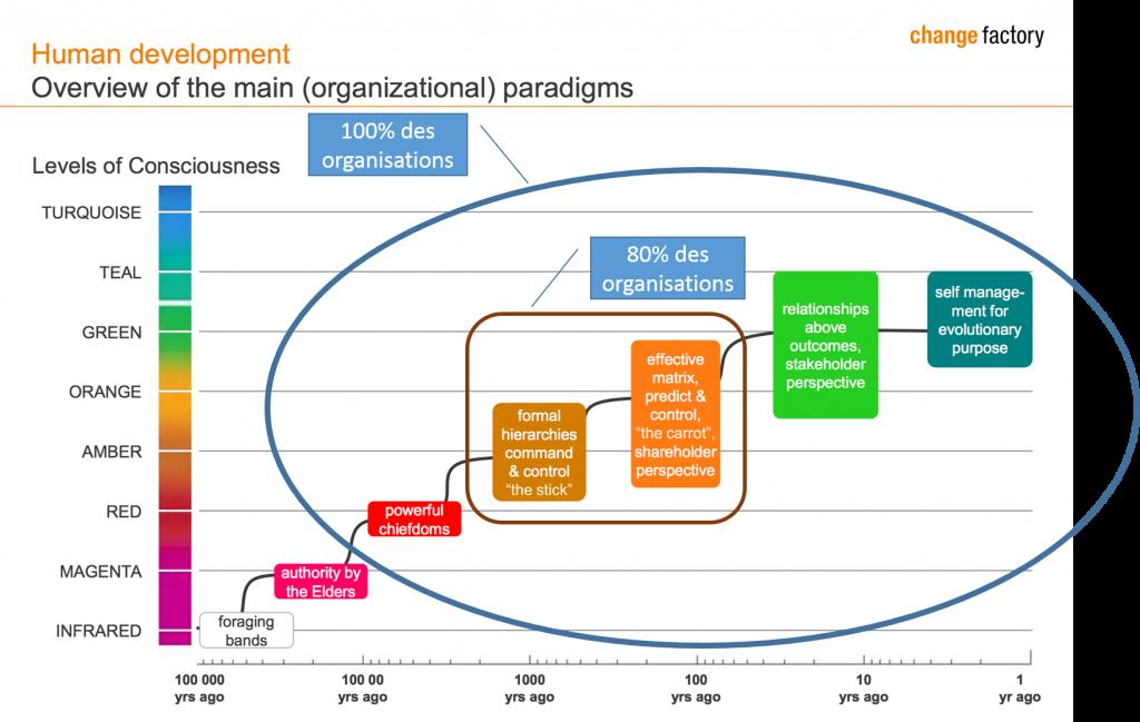 stades de développement des organisations